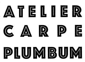 carpe plumbum